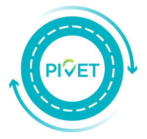 Pivet solutions webpage icons 01