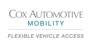 Cam flexible vehicle access logo one color stacked